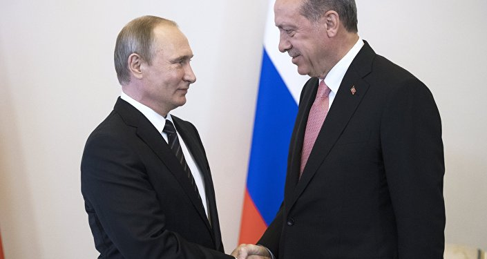 Russian President Vladimir Putin meets with Turkish President Recep Tayyip Erdogan at the Constantine Palace.