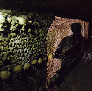 Paris Catacombs: The Dark and Enigmatic Underworld of the French Capital