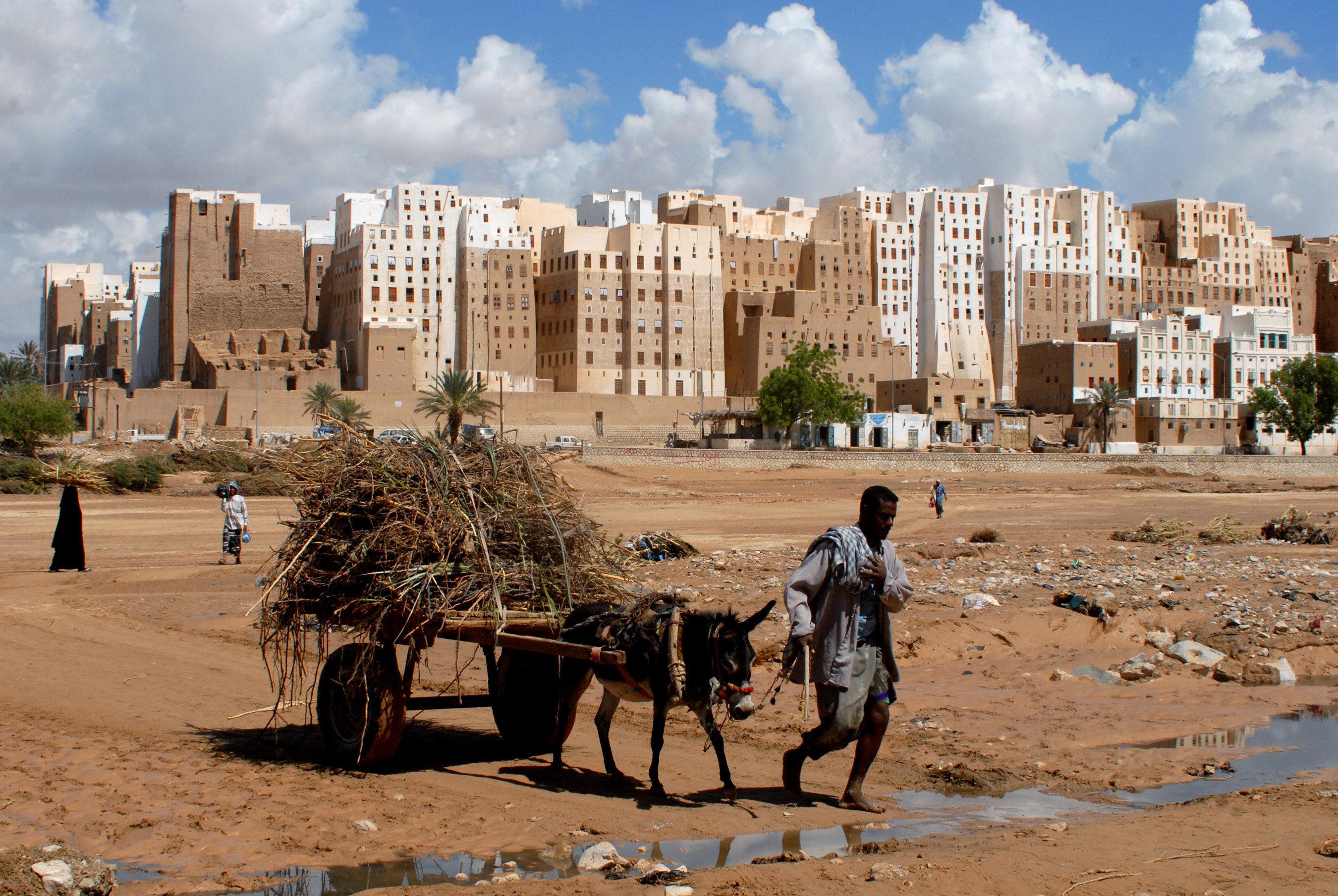 A Yemeni man pulls his donkey cart past the historical city of Shibam in Hadramaut province of eastern Yemen on October 28, 2008