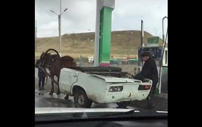 This is How You Refuel a Horse