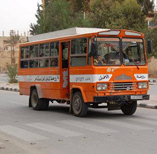 Palmyra town school bus