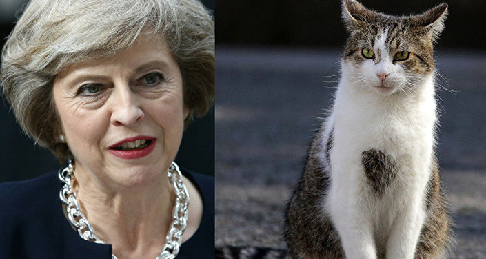 Theresa May and Larry the Cat