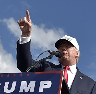 Republican presidential candidate Donald Trump speaks during a rally at the Lakeland Linder Regional Airport in Lakeland, Florida on October 12, 2016.