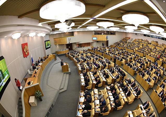 State Duma plenary meeting