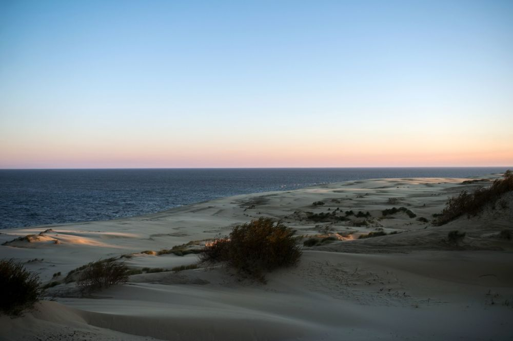 A view of the Efa Height from an observation point. The highest point of the Orekhovaya dune (55 meters) is named Efa after the forester Franz Wilhelm Efa, whose work has been devoted to the study and consolidation of mobile sands.