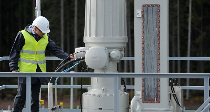 A test treatment facility at the Portovaya booster station, where the second section of the Nord Stream gas pipeline was launched. (File)