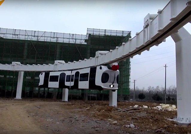 Take A Ride On The Panda Express!