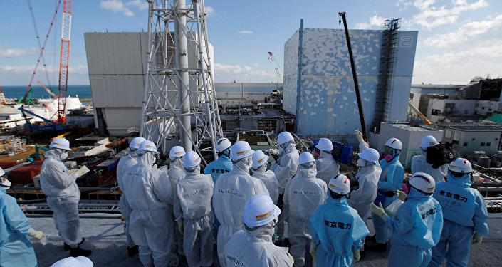 Members of the media, wearing protective suits and masks, receive briefing from Tokyo Electric Power Co. (TEPCO) employees (in blue) in front of the No. 1 (L) and No.2 reactor buildings at TEPCO's tsunami-crippled Fukushima Daiichi nuclear power plant in Okuma town, Fukushima prefecture, Japan February 10, 2016.