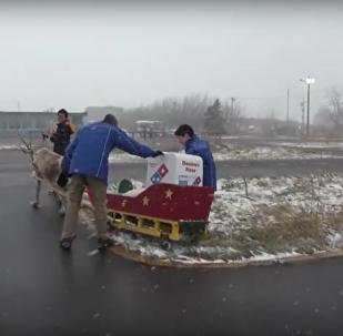 Domino's Japan reindeer delivery