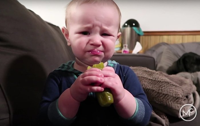 Baby tries pickle - His reaction has us in tears! - The McAllisters