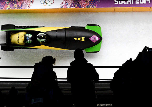 Bobsleigh competition at the XXII Olympic Winter Games in Sochi. (File)