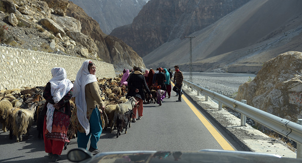 Local people control their sheep and goats at the Karakoram highway in Gulmit village of Hunza valley in northern Pakistan