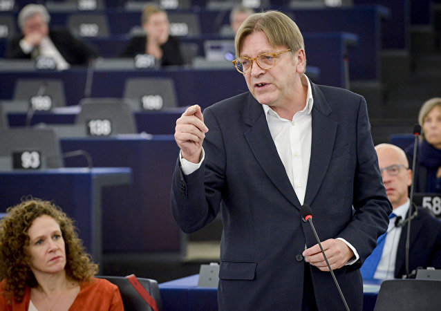 Guy Verhofstadt, the European Parliament's chief Brexit negotiator