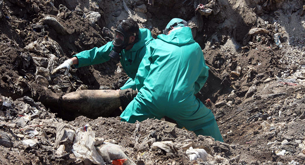 Mass grave. Syria (File)