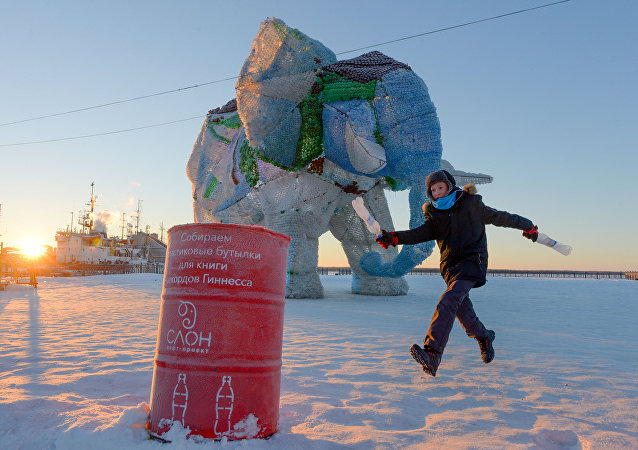 An elephant made of plastic bottles on Arkhangelsk's Krasnaya Wharf.