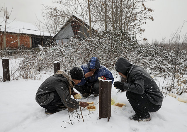 Migrants eat free food during a snowfall outside a derelict customs warehouse in Belgrade, Serbia January 9, 2017