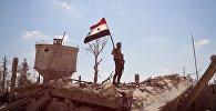 'Syria. Photo Chronicles of War:' Exhibition by Rossiya Segodnya and VGTRK