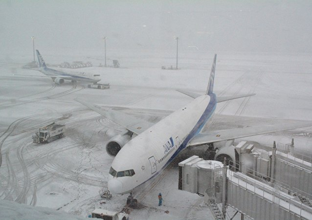 Jetliners of Japan's All Nippon Airways (ANA) are parked at Tokyo's Haneda airport covered in snow (File)