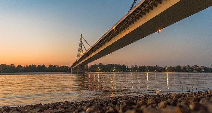 Liberty Bridge on the Danube river in Novi Sad