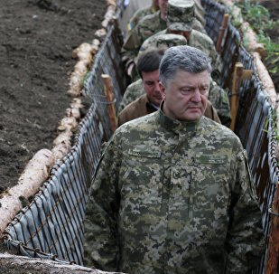 Ukrainian President Petro Poroshenko, examines the construction of fortifications in Donetsk region, Ukraine (File)