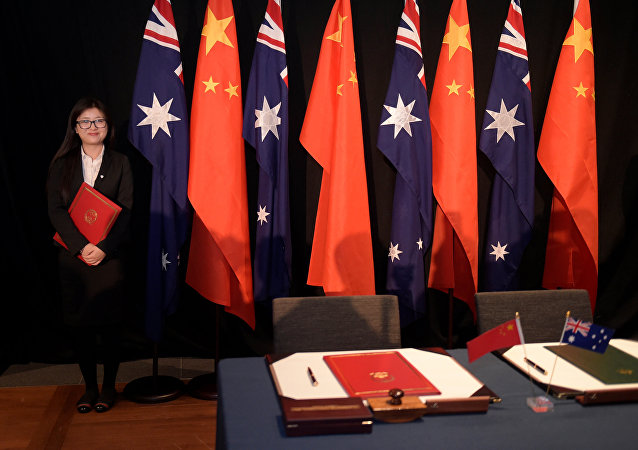 A woman holding a copy of the free trade agreement (FTA) stands next to national flags of China and Australia (File)