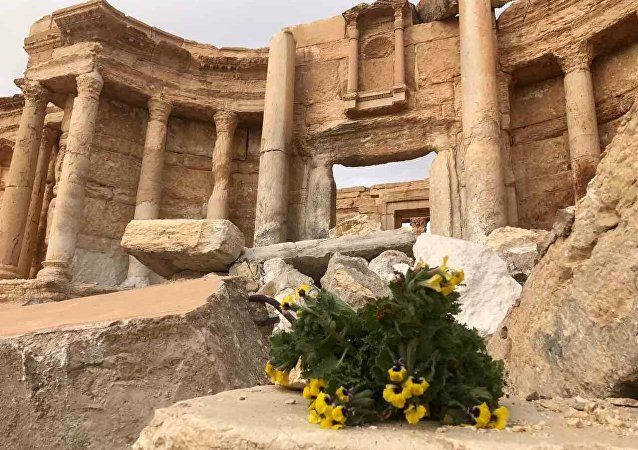 Palmyra recaptured by Syrian Arab Army backed by Russian Aerospace Forces