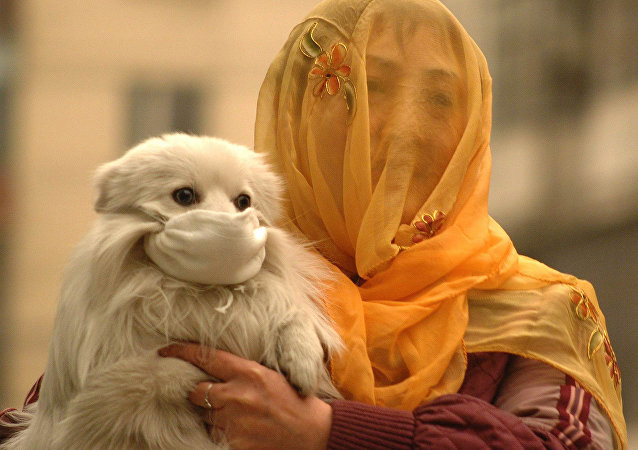 A woman with a voile over her head puts on a face mask to her little dog. China (File)
