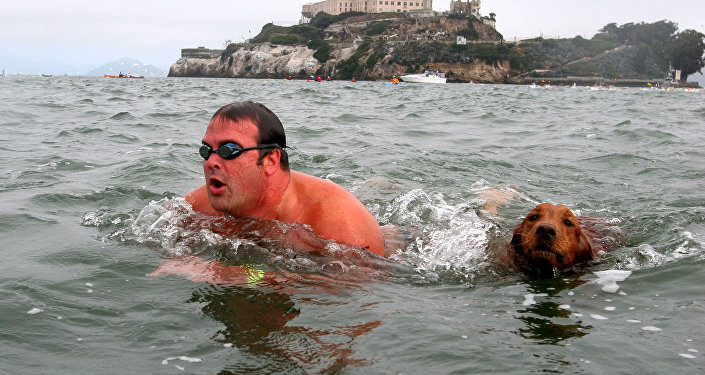 Jake, a 4-year-old golden retriever, swims from Alcatraz towards San Francisco with Jeff Pokonosky, of San Diego, during the 10th Annual South End Rowing Club Alcatraz Invitational. (File)