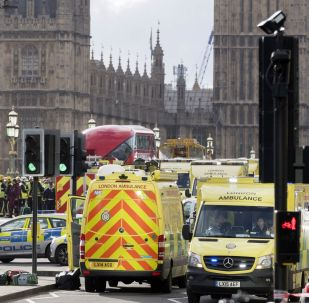 Police officers cordon off the territory near the U.K. Parliament in London where an assailant attacked a police officer and pedestrians.