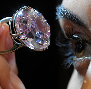 A model poses with a 59.60-carat mixed cut diamond known as The Pink Star which sold for $71.2 million.
