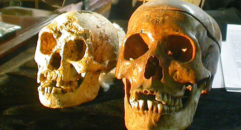 The skull, left, of a 54,000-year-old species, known as Homo floresiensis, is displayed next to a normal human's skull, right, at a news conference in Yogyakarta, Indonesia Friday, Nov. 5, 2004. H floresiensis was nicknamed the hobbits due to their diminutive size.