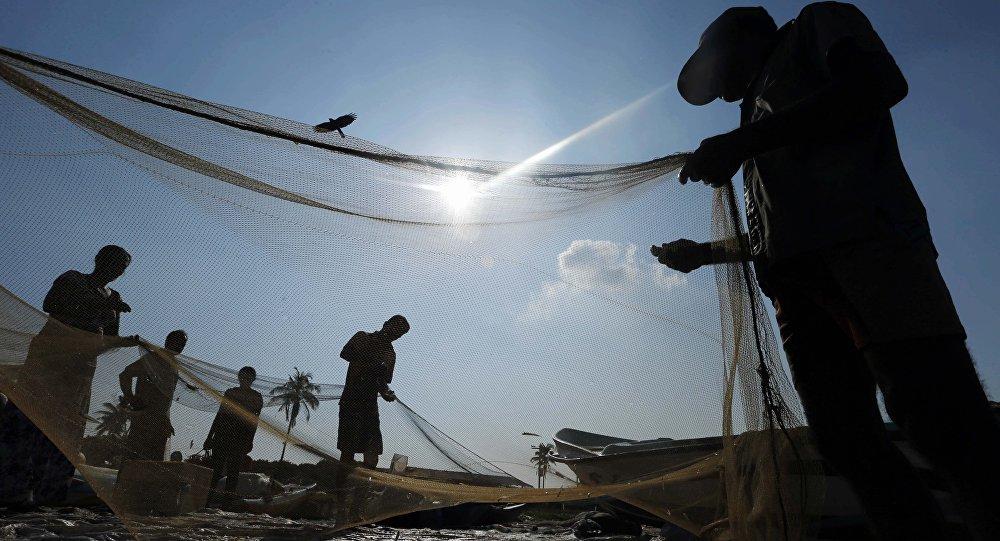 Sri Lankan fishermen sort their catch in a fishery harbor in Colombo, Sri Lanka (File)