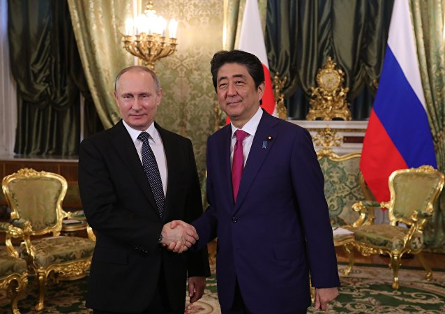 Russian President Putin and Japanese PM Abe Hold Joint Presser in Moscow