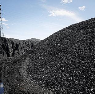 Piles of coal