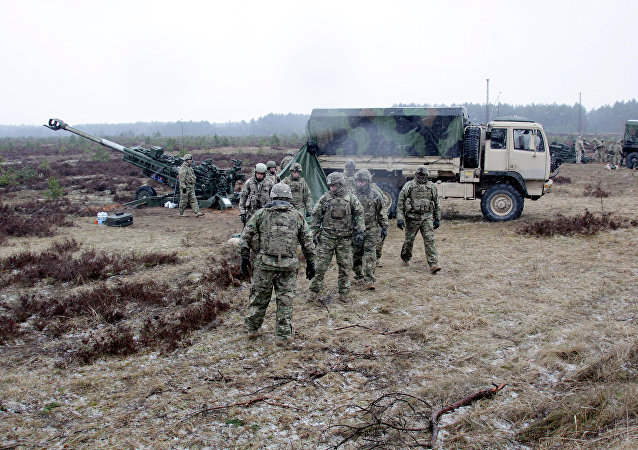 NATO's service personnel during the Operation Summer Shield drill in Latvia. (File)