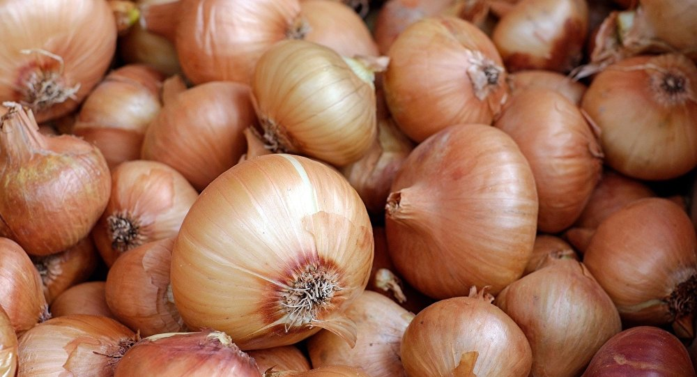 Indian Scientists Develop Soft Robotic Actuators From Waste Onion Peels