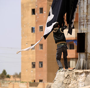 A member of the US-backed Syrian Democratic Forces removes a Daesh flag in the Syrian town of Tabqa. File photo