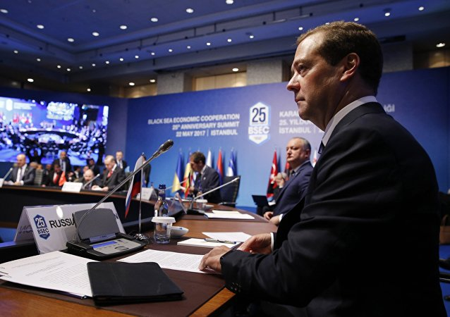 Russian Prime Minister Dmitry Medvedev attends BSEC summit in Istanbul