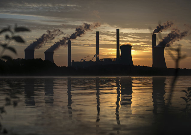 The coal-fired Plant Scherer, one of the nation's top carbon dioxide emitters, stands in the distance in Juliette, Ga., Saturday, June, 3, 2017