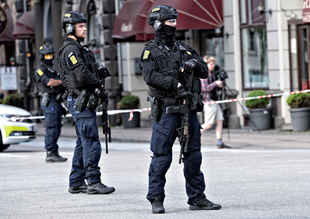 Danish police (File)