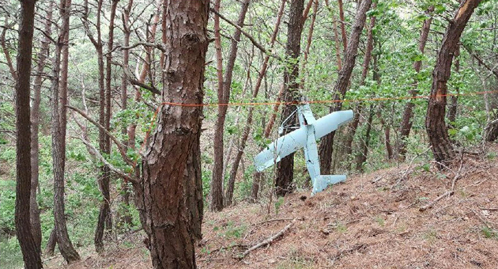 A small aircraft what South Korea's Military said is believed to be a North Korean drone, is seen at a mountain near the demilitarised zone separating the two Koreas in Inje, South Korea in this handout picture provided by the Defence Ministry and released by News1 on June 9, 2017
