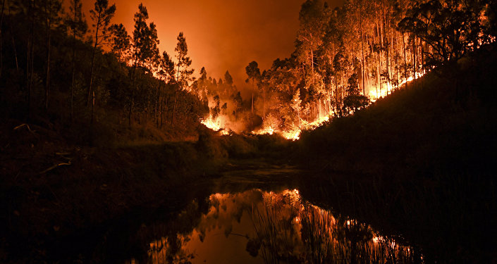 A wildfire is reflected in a stream at Penela, Coimbra, central Portugal
