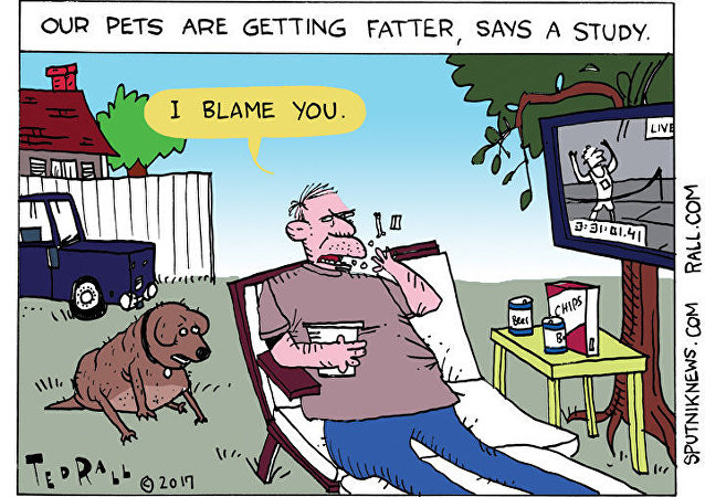 Overweight Pets Cartoon
