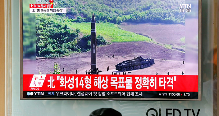 North Korea's missile launch just self defence - expert