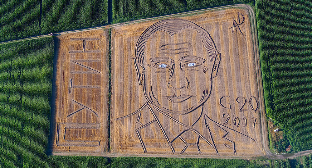 Vladimir Putin portrait created in Italian field ahead of G20 summit