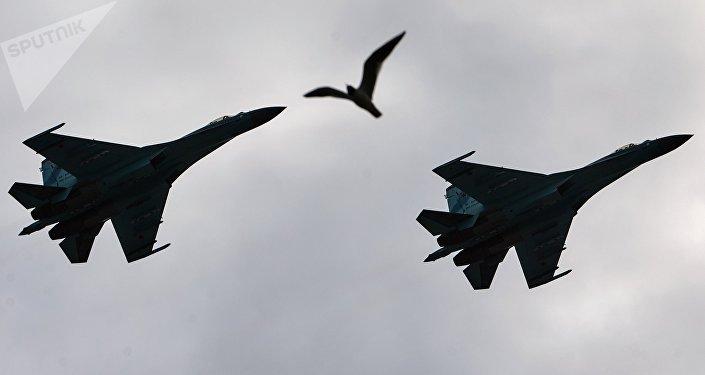 Defense Ministry: Russia's Su-27 Escorts Germany's FGR.4 Typhoon Over Baltic Sea