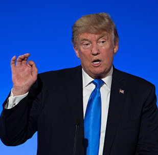 US President Donald Trump (File)