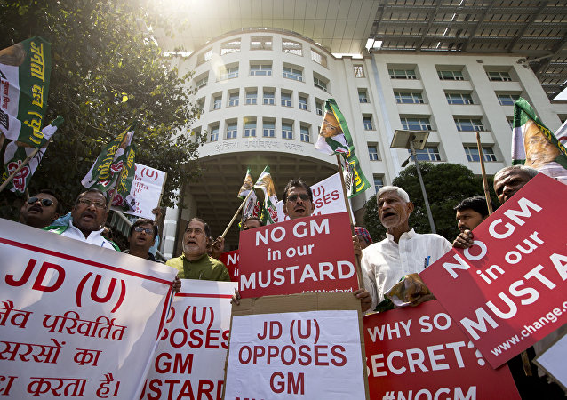 Supporters of Janata Dal (United) or JD(U), protest against genetically modified mustard outside the Ministry of Environment, Forest and Climate Change, in New Delhi, India, Wednesday, Sept. 7, 2016