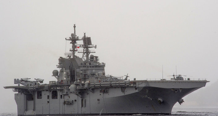 The US Navy amphibious assault ship USS America (LHA-6). (File)