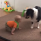 Baby's Best Bud: Friends at Play